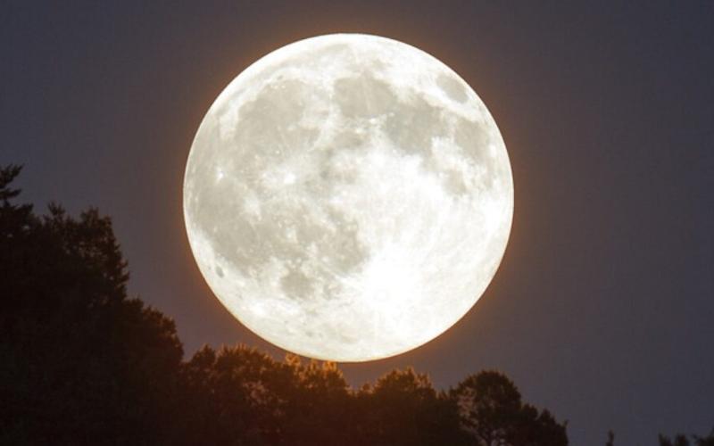 Este finde se verá en Argentina la primer Superluna de nieve del año