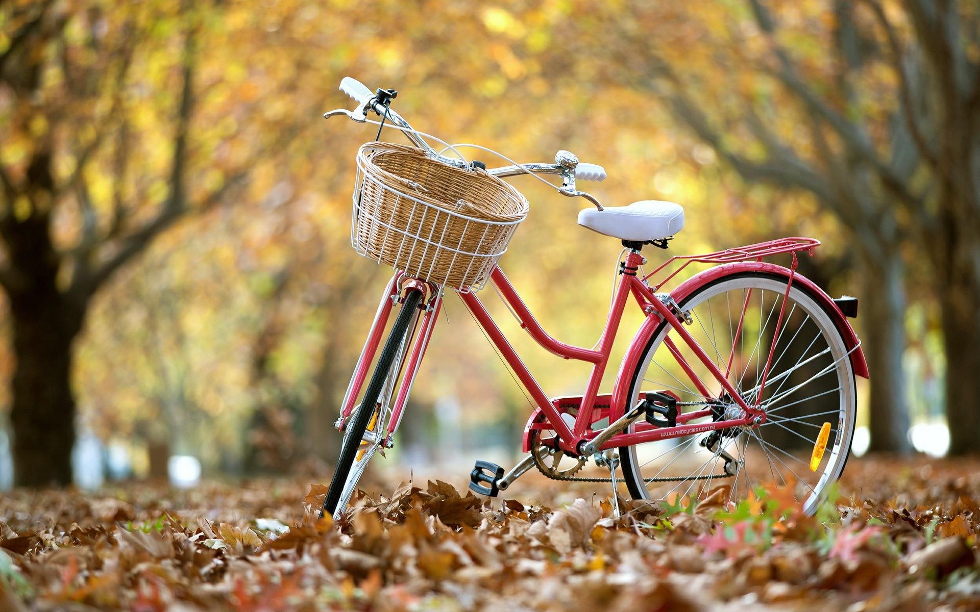 12 razones para andar en bicicleta